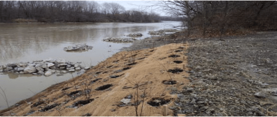 Black River Habitat Restoration